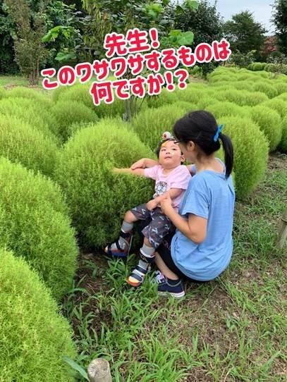 熊谷スポーツ文化公園のコキア畑で。療育の先生と一緒に♪