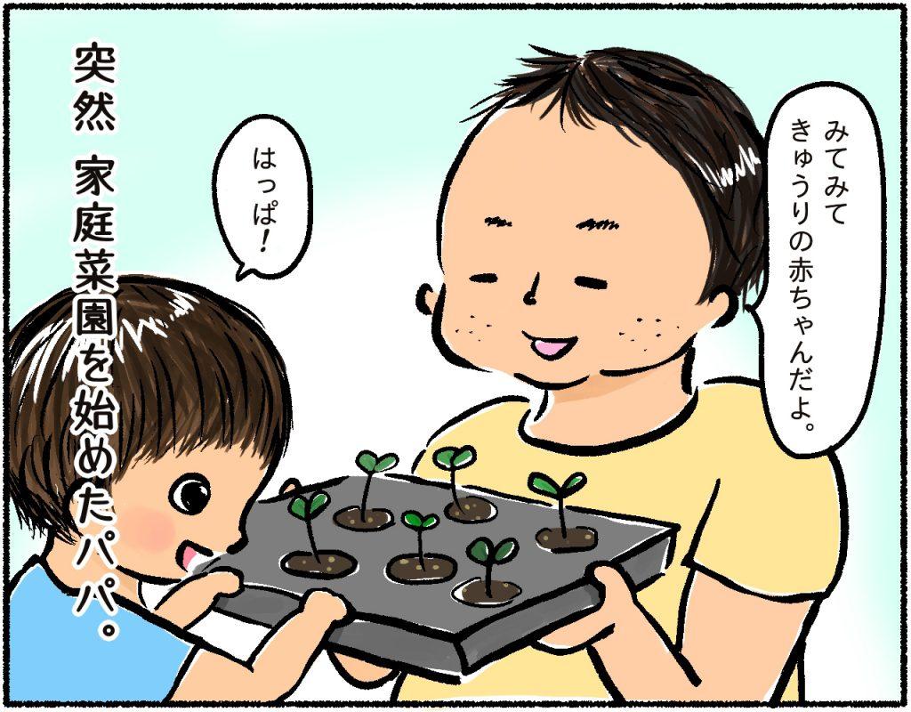 家庭菜園1コマ目